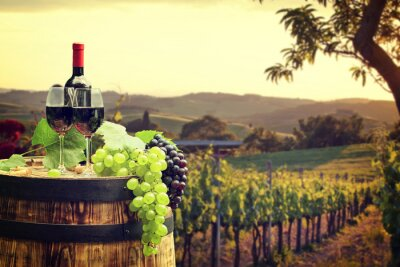 Wall mural Red wine with barrel on vineyard in green Tuscany
