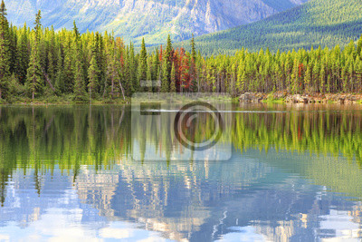 Reflection in smooth water