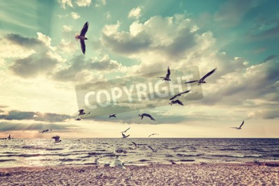 Wall mural Retro stylized beach with flying birds at sunset.