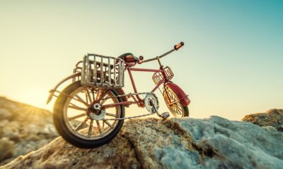 Wall mural retro toy bicycle by the sea