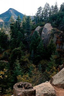 Wall mural Ridge
