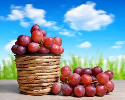 Ripe grape vine in wooden basket. Summer harvest. Gardening concept.