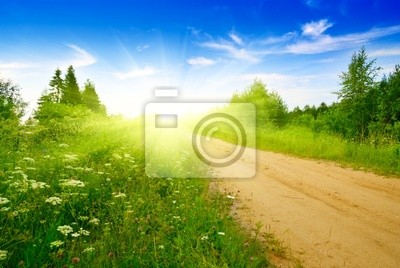 Wall mural road from sand and perfect summer day