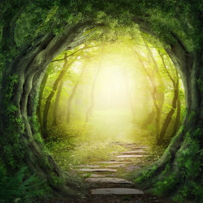 Wall mural Road in dark forest