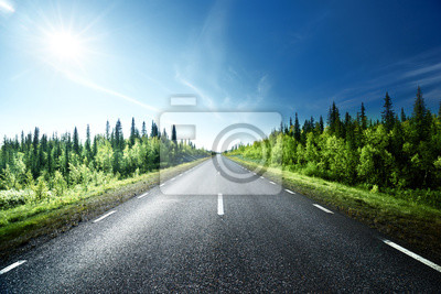 Road in forest, Sweden