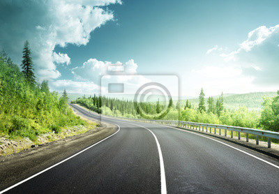 road in north forest