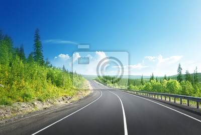 road in north mountain forest