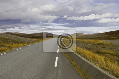 Road in the autumn tundra, Norway