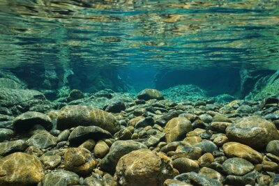 Wall mural Rocks underwater on riverbed with clear freshwater, Dumbea river, Grande Terre, New Caledonia