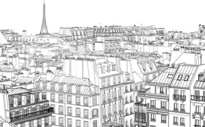 Wall mural roofs in Paris