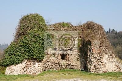 Wall mural Ruins