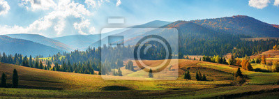 Wall mural rural area of carpathian mountains in autumn. wonderful panorama of borzhava mountains in dappled light observed from podobovets village. agricultural fields on rolling hills near the spruce forest