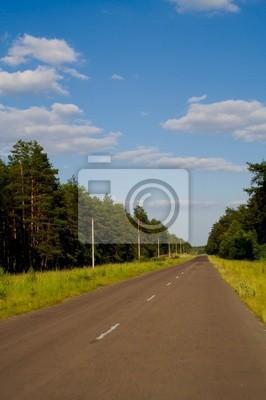 rural landscape 1