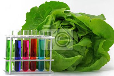Salad mit laborgläser