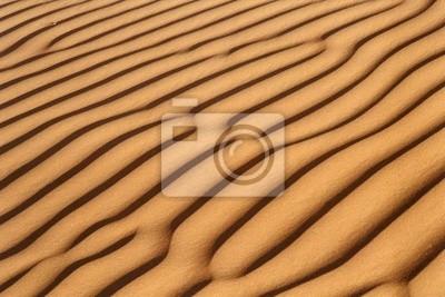 sand dune rib
