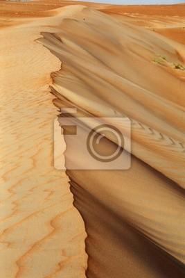 sand dune ribs