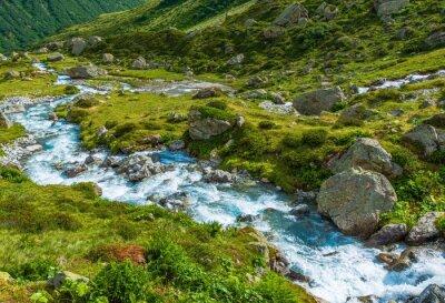 Wall mural Scenic Alpine River