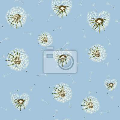 Wall mural Seamless dandelion pattern, vector plant and seeds illustration on sky background