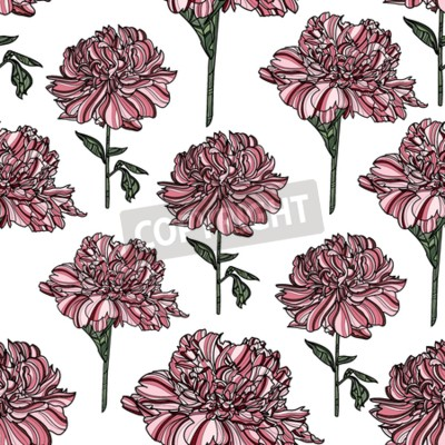 Wall mural Seamless floral pattern with peony on white background.  Vector illustration. Typography design elements for prints, cards, posters, products packaging, branding.