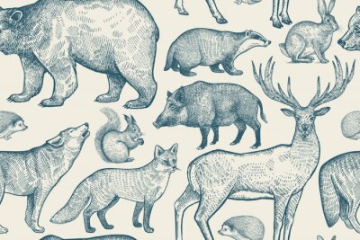 Wall mural Seamless pattern with animals.