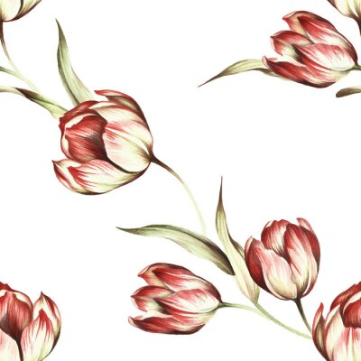 Wall mural Seamless pattern with tulips. Hand draw watercolor illustration