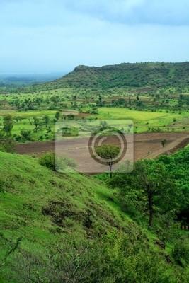 Seasonal Indian landscape