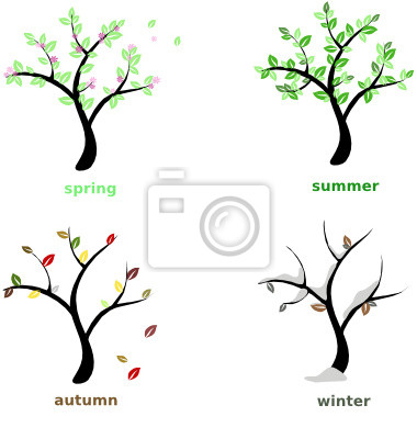 Wall mural seasons