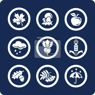 Seasons: Autumn vector icons (set 4, part 2)