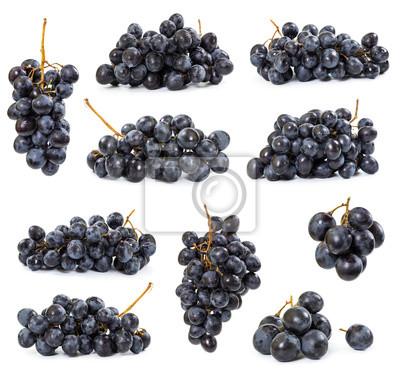 Set of dark grapes
