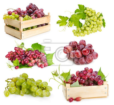 Set of grapes