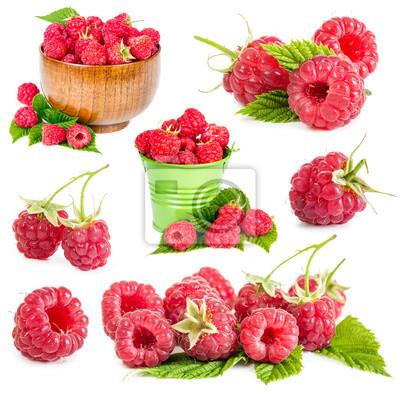 Set of raspberry