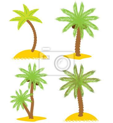 Set of various palm trees. Objects isolated