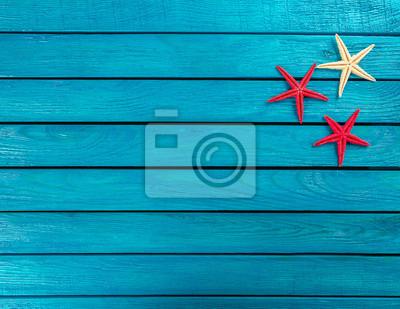 shell, beach, banner, sea