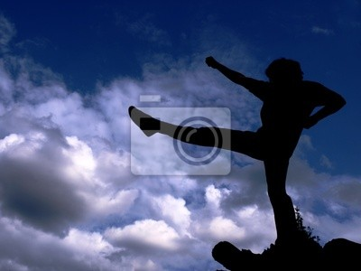 Silhouette - karate