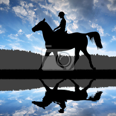 silhouette of a rider on a horse