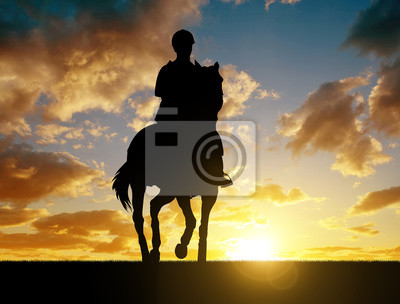 Silhouette of a rider on a horse at sunset.