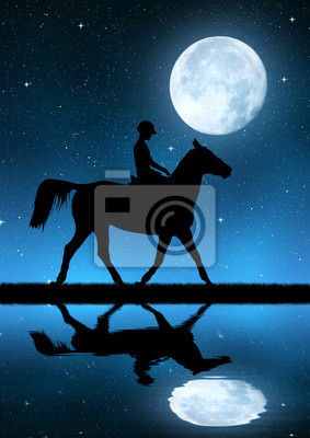 silhouette of a rider on a horse in night