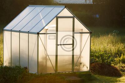 Small greenhouse in backyard
