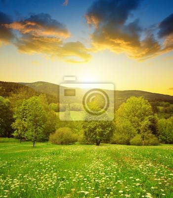 Spring mountain landscape in National park Sumava at sunset - Czech Republic
