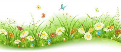Wall mural Spring or summer floral banner with green grass, flowers and butterflies