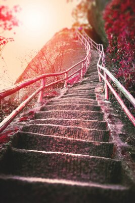 Wall mural Stairs on the mountain