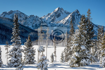 Wall mural Stanley Lake in winter with snow covered trees