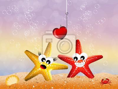 Starfish in love