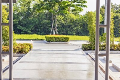 Wall mural Stepping concrete Path in a Peaceful Green Garden
