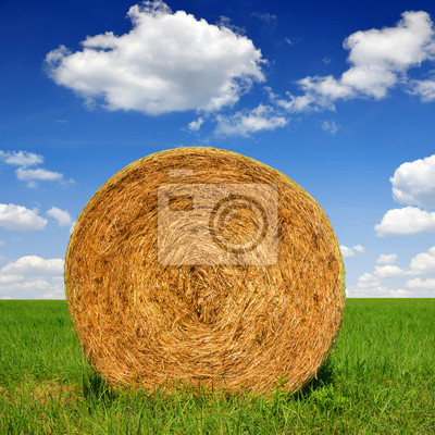 straw bale in a lush green field and blue sky
