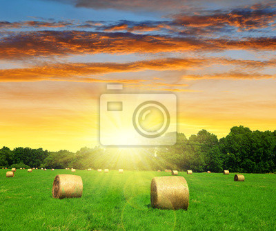 straw bale in a lush green field at sunset