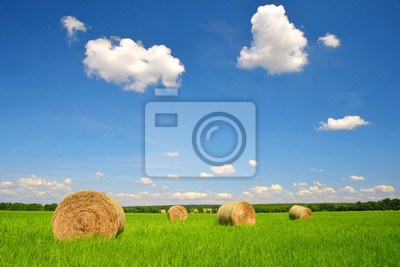 straw bales in a lush green field and blue sky