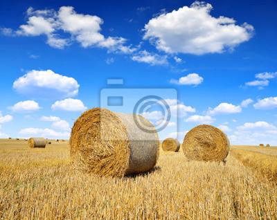 Straw bales on farmland with blue cloudy sky