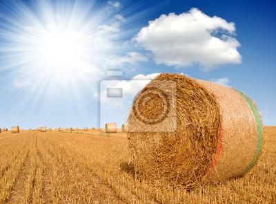 Straw bales on farmland with blue sky