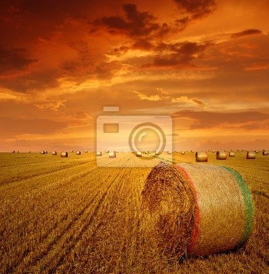 Straw bales on farmland with red cloudy sky